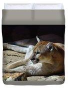 Resting Cougar Duvet Cover