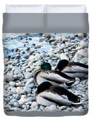 Resting Ducks Duvet Cover
