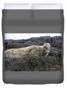 Resting Gray Seal On Seaweed Duvet Cover