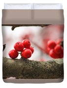 Resting Winter Berries  Duvet Cover