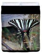 Resting Zebra Swallowtail Butterfly Duvet Cover