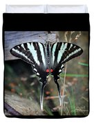 Resting Zebra Swallowtail Butterfly Square Duvet Cover