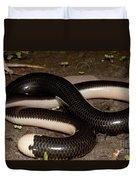 Reticulate Worm Snake Duvet Cover