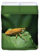 Rhubarb Weevil Duvet Cover