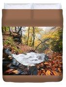 Ricketts Glen State Park Ganoga Falls Allegheny Mountains Pennsylvania Duvet Cover