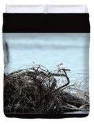 Ring Billed Gull Duvet Cover