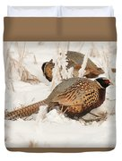 Ring-necked Pheasant Hunting In The Snow Duvet Cover