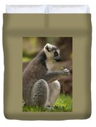 Ring-tailed Lemur Holding A Clump Of Grass Duvet Cover