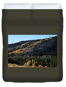 Rio Grande National Forest Duvet Cover