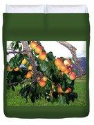 Ripe Apricots Duvet Cover