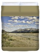 River Bed In Denali National Park Duvet Cover