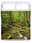 River Crossing On The Maryland Appalachian Trail Duvet Cover