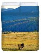 Rmnp Plains In Autumn Duvet Cover