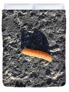Road Caterpillar Duvet Cover