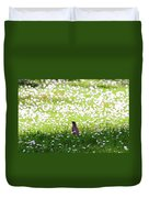 Robin In A Field Of Daisies Duvet Cover