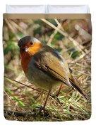 Robin In Hedgerow 3 Duvet Cover