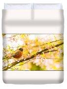 Robin In Spring Blossom Cherry Tree Duvet Cover