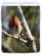 Robin On Branch Donegal Duvet Cover
