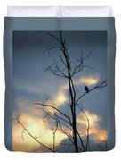 Robin Watching Sunset After The Storm Duvet Cover