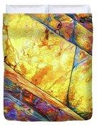 Rock Art 23 Duvet Cover