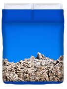 Rock Formations And Blue Sky Duvet Cover