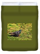 Rock Pigeon Duvet Cover