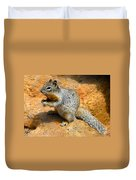 Rock Squirrel Duvet Cover