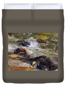 Rocks In A Stream 2a Duvet Cover
