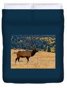 Rocky Mountain Bull Elk Duvet Cover