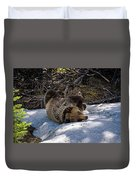 Roll In The Snow Duvet Cover