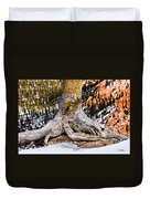 Roots Gripping The Edge Duvet Cover