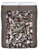Rope In Shells Duvet Cover