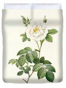 Rosa Alba Flore Pleno Duvet Cover