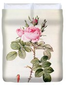 Rosa Bifera Officinalis Duvet Cover by Pierre Joseph Redoute