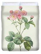 Rosa Centifolia Caryophyllea Duvet Cover