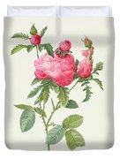Rosa Centifolia Prolifera Foliacea Duvet Cover