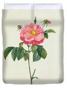 Rosa Gallica Flore Marmoreo Duvet Cover