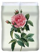 Rosa Gallica Regalis Duvet Cover by Pierre Joseph Redoute
