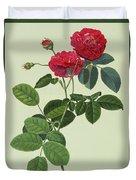 Rosa Holoferica Multiplex Duvet Cover