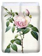 Rosa Indica Fragrans Duvet Cover by Pierre Joseph Redoute