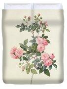 Rosa Multiflora Carnea Duvet Cover