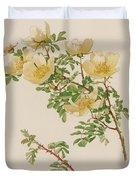 Rosa Spinosissima Var Hispida Duvet Cover