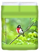Rose-breasted Grosbeak 2 Duvet Cover