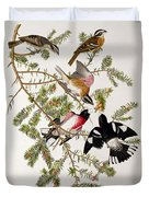 Rose Breasted Grosbeak Duvet Cover by John James Audubon