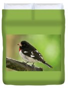 Rose-breasted Grosbeak Male Perched New Jersey  Duvet Cover
