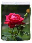Rose Of Romance Duvet Cover