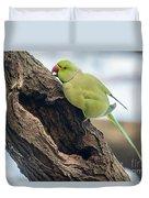 Rose-ringed Parakeet 03 Duvet Cover