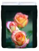 Rose Trio Duvet Cover by Kathy Yates