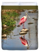 Roseate Spoonbill Reflections Duvet Cover