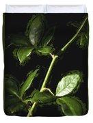 Roseless Stem Duvet Cover